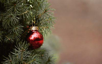 Sapin de Noël, comment s'en débarrasser ?